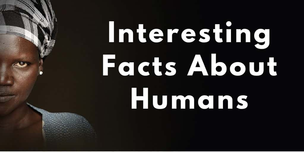 Interesting Facts About Humans
